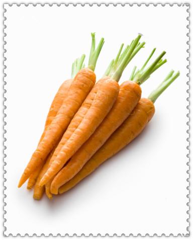 春季健脾養胃 家庭必備十大養生菜