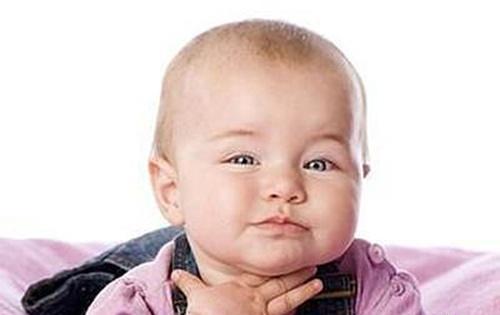 小孩喉的结构图
