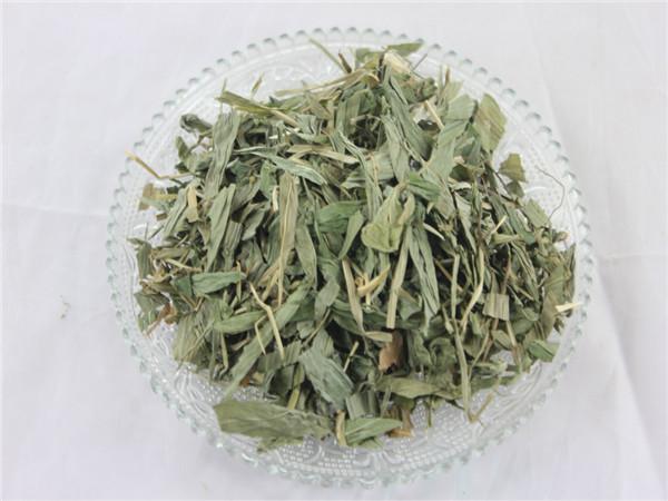 淡竹叶   淡竹叶也是很宝贵的一种植物,不但可以泡茶喝,也可以泡水喝图片