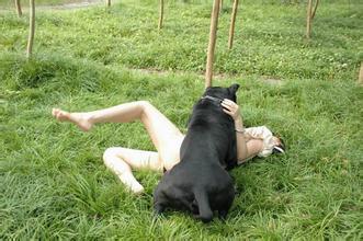 成人电影人与动物2_72年公映的情色电影《女人与狗交配小说》中,赤裸裸的口交画面开始让
