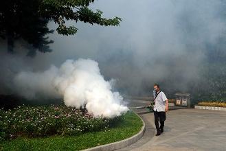"""北京市开展""""扫蚊""""行动 预防蚊虫传染病"""